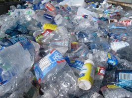 WID Scientists Inject More Life into Recyclable Plastics