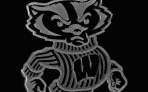 UW-Madison's Bucky Badger formed out of collagen / courtesy of Kevin Eliceiri