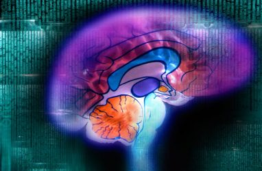 Mining the Mind: High Throughput Computing and the Future of Brain Research