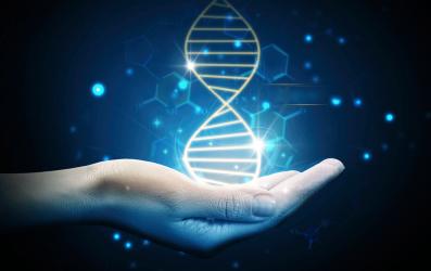 CRISPR Democracy: Gene Editing and the Need for Inclusive Deliberation