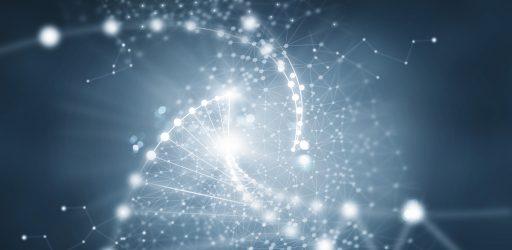 Deciphering Gene Regulatory Networks