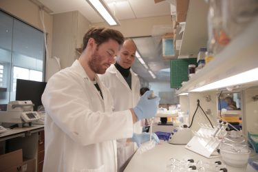 With Human Spinal Cord Tissues in a Dish, UW-Madison Engineer Aims to Accelerate Disease Treatment