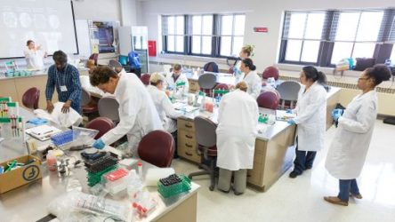 Students Search for New Antibiotics in Initiative that Brings Real Science to Classrooms