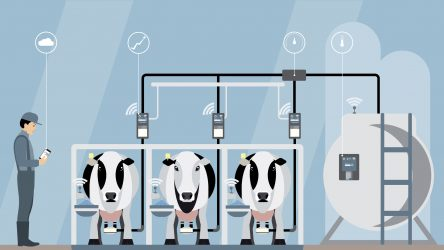 "WID Researchers Showcase ""Virtual Diary Farm Brain"" at American Dairy Science Association Meeting"