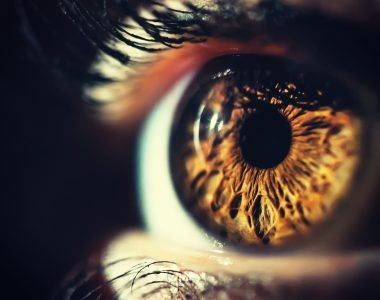 Scientists Seek to Improve Quality Control for Genome Editing Therapies in the Eye