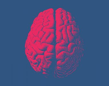 UW–Madison Researchers Developing Methods to Edit Genes in Brain Cells