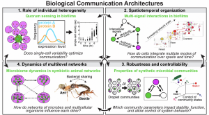 Biological communication architecture figure