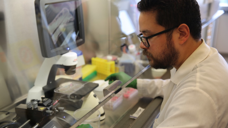 Carlos Marti-Figueroa, a PhD student in the lab of Biomedical Engineering Assistant Professor Randolph Ashton, works on injecting stem cells into alginate hydrogels. Photo: Renee Meiller.