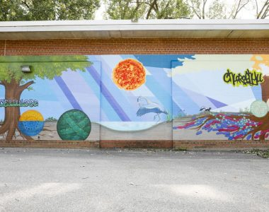 """The Cap Times: New South Side Mural Aims to Teach Science Through Art, Convey """"Invisible Beauty"""""""
